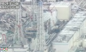 Fukushima Daiichi February 2012 - South
