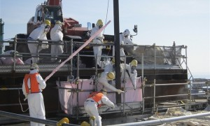 Fukushima Daiichi Unit 4 Spent Fuel Removal Operation