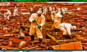 Japanese-Decontamination-Projects-360x600