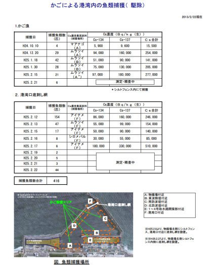 Record levels of cesium found in greenling fish at Fukushima Daiichi