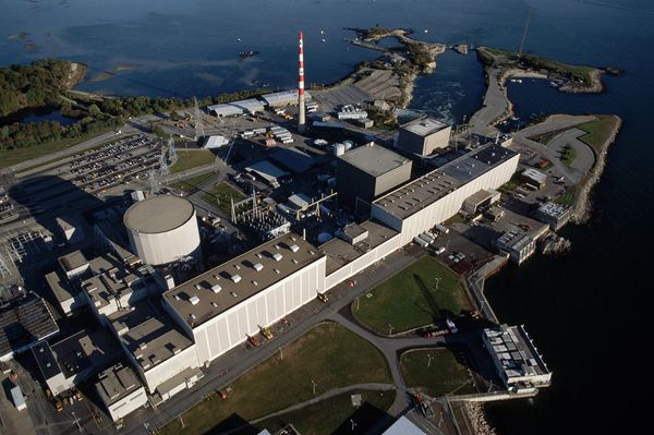 Supervisor at Millstone nuclear power plant violates fitness for duty policy