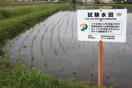 Fukushima Daiichi cleanup operations blamed for contamination of rice crops | Enformable